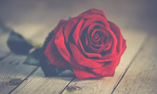 30 คำคมความรัก เศร้าๆเจ็บๆ มาใหม่ โดนใจคนอกหัก